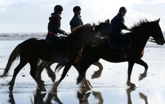 filming horses on Carmarthenshire Beach with GH4 (continued)