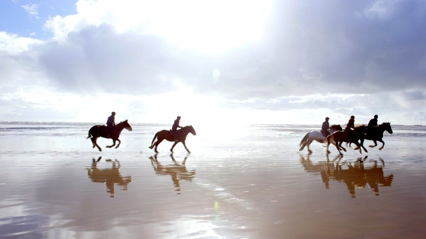 Horse riding: Year of Adventure